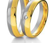 basic_ring_100